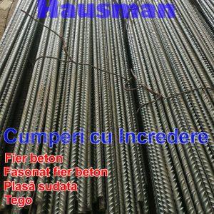 Fier beton bst500 de 10